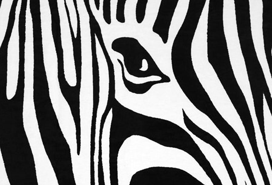 Obudź w sobie Zwierzę! Odkryj najmodniejszy print sezonu razem z nową kolekcją Zebra